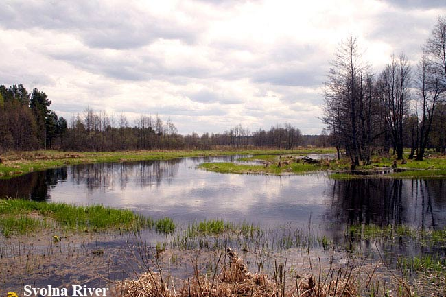 Birding in Belarus, Bed and Birding, Accommodation for Birders