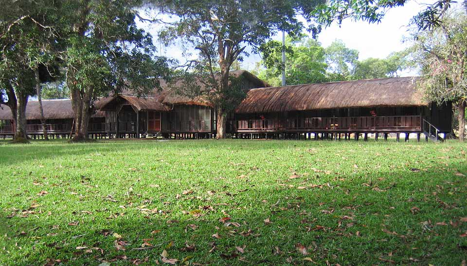 Bensbach-Wildlife-Lodge, Papua-New-Guinea, Bed-&-Birding, PNG-Birding