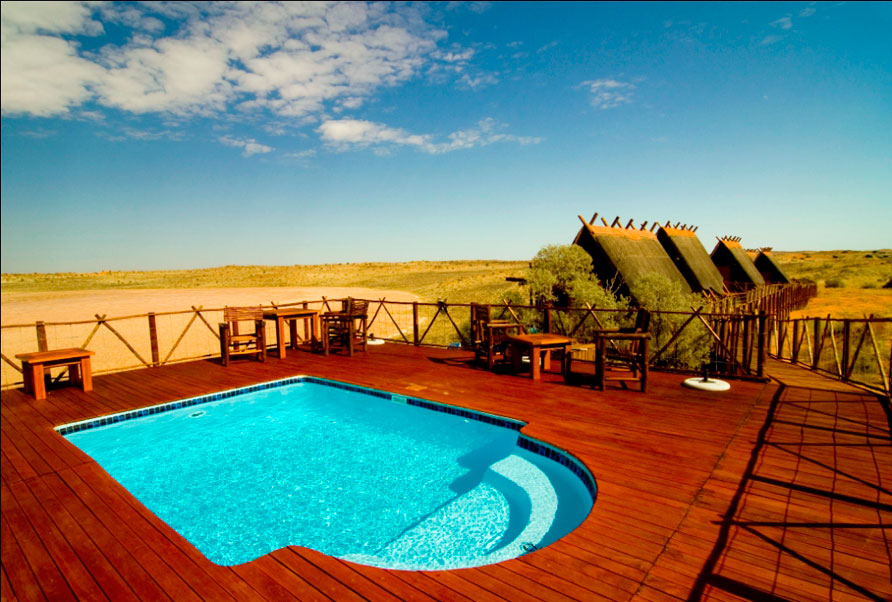 !Xaus Lodge, Kgalagadi Transfrontier Park, Birding South Africa, Bed and Birding