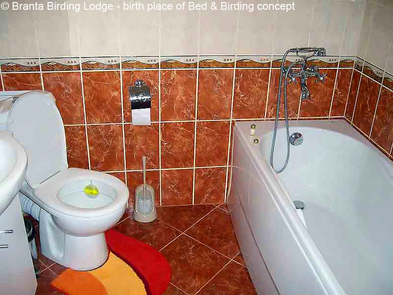 Branta-Birding-Lodge, Bed-and-Birding-Homes-made-for-Birders