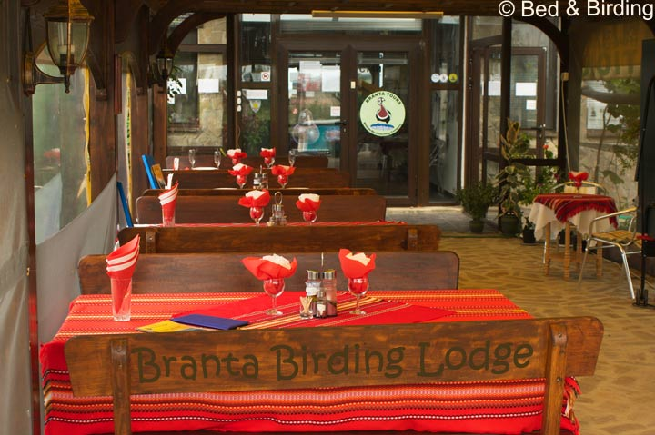 Branta-Lodge, Bed-and-Birding, Birding-in-Bulgaria, Durankulak-Lake