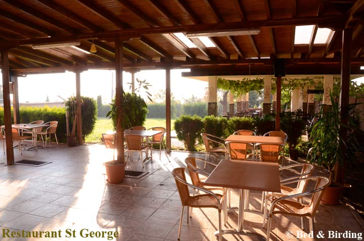 St-George-Complex, Bed-&-Birding, South-Black-Sea-coast, Birding Bulgaria