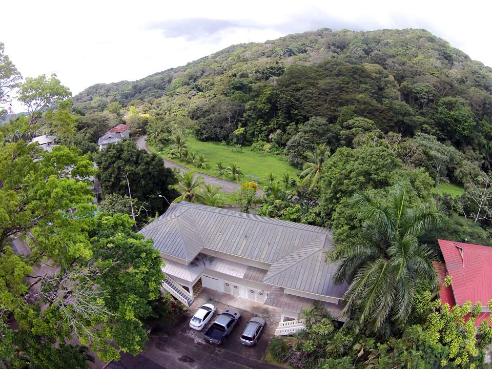 Canopy B&B, a great base for birding in central Panama
