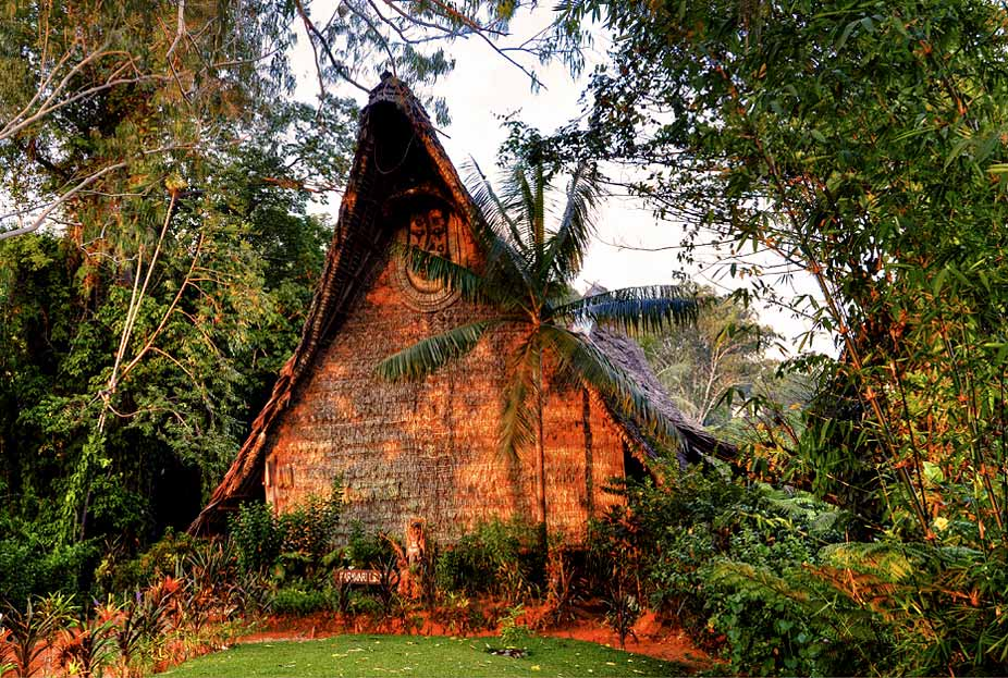 Bed-and-Birding-Papua-New-Guinea-Accommodation-for-Birders