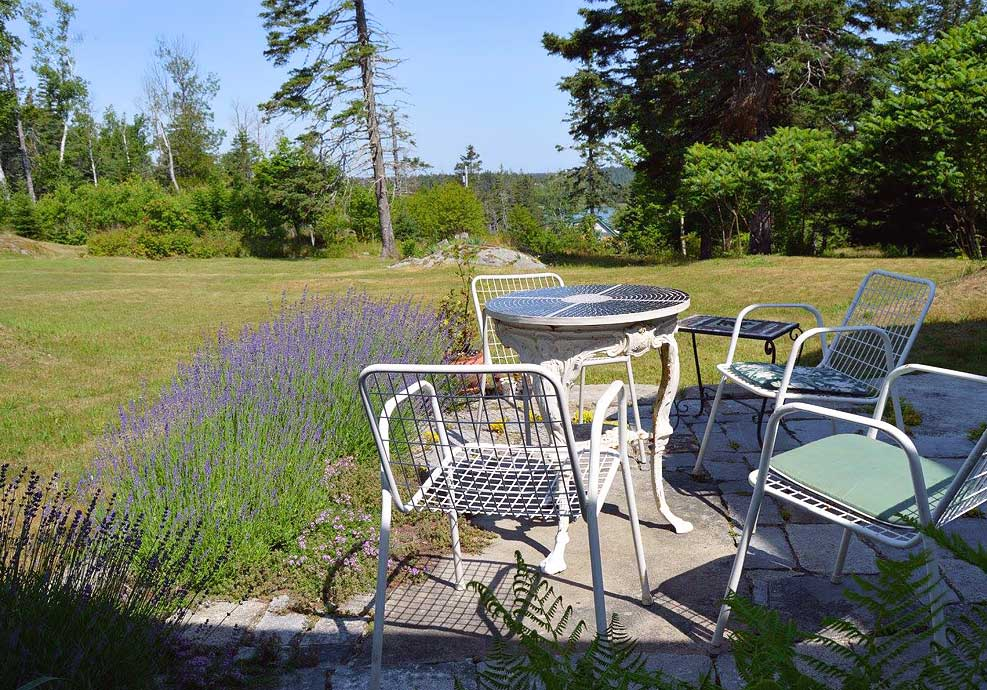 Stone-Farm-Cottage, Birding-Vinalhaven-USA, Accommodation-for-Birdwatchers