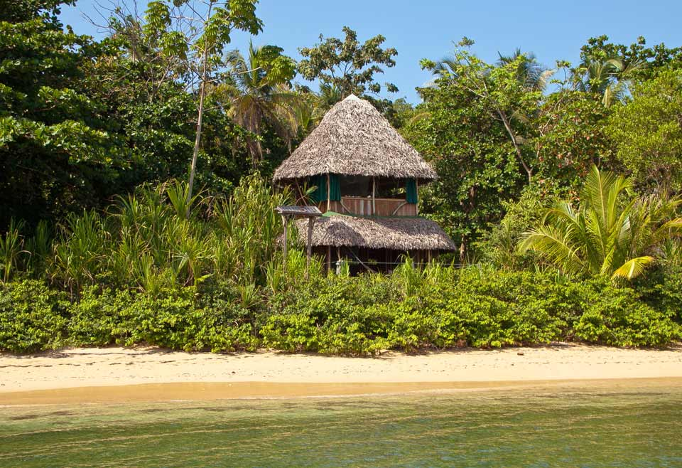 Al Natural Resort, Bed and Birding Panama, Birding Caribbean