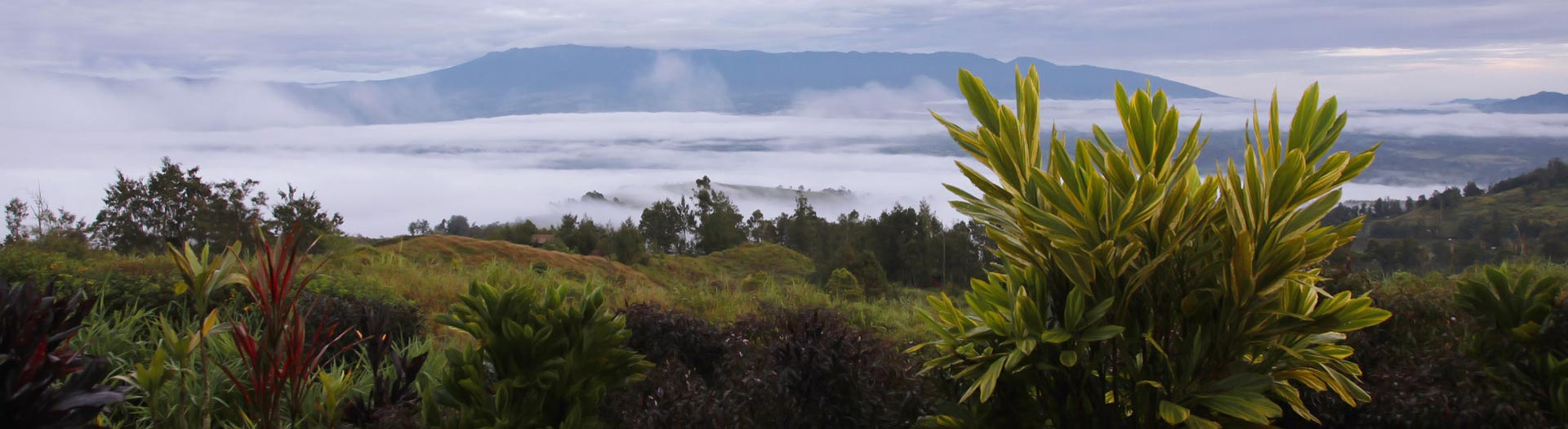 Wahgi Valley & the Mount Hagen, the heart of the Papua New Guinean highlands